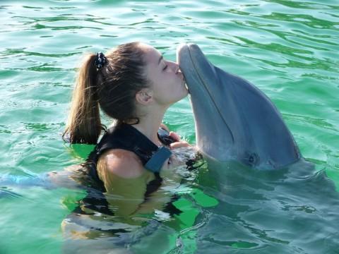 Der für die meisten relativ unbekannte, gleichzeitig aber freundlich-neugierige Delfin ist als Therapietier sehr gut geeignet.