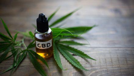 CBD Öl gegen chronische Schmerzen